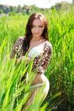 Atrakcyjna zmysłowa kobieta w zielonym trzciny polu Fotografia Royalty Free