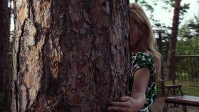 Atrakcyjny kobiety odprowadzenie wokoło sosna bagażnika w lato parku zbiory