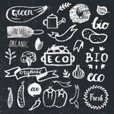Atramentów logotypy ustawiający Odznaki, etykietki, liście, faborki, zasadzają elementy, bobek royalty ilustracja