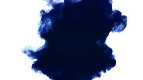 Atrament azul del descenso de la tinta en agua almacen de metraje de vídeo