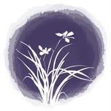 Atrament kropli kwiat Obraz Royalty Free