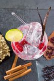 Atrape el cóctel tónico con la rebanada y el hielo de Lima de la frambuesa de la vainilla Fotografía de archivo