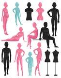 Atrapy mannequin modela wektoru ilustracja ilustracja wektor