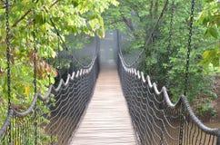 Através da ponte Fotografia de Stock Royalty Free