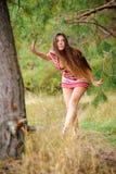 Através das madeiras Foto de Stock