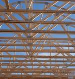 Através do telhado Foto de Stock