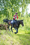 Através dos campos Cavaleiro não identificado no cavalo Imagens de Stock