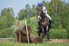 Através dos campos Cavalo levando com uma parada repentina Foto de Stock Royalty Free