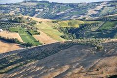 Atri Natural Park (Italy), landscape Stock Photography