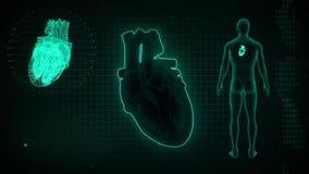 AV Node Signal or Atrioventricular Node Signal of Human Heart