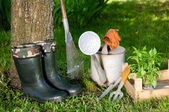 Att arbeta i trädgården bearbetar Arkivfoto