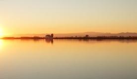 Att att få sena risfält av lagun av Valencia Royaltyfria Foton