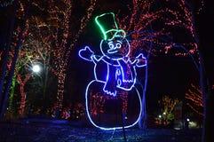 Att att gå till och med den lysande skärmen på den nya Year's helgdagsaftonen på Lincoln Park Zoo i Chicago Royaltyfria Bilder