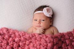 Att beskåda som är nyfött, behandla som ett barn flickan royaltyfri fotografi