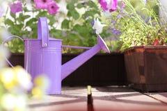 Att bevattna blommar i balkong Royaltyfria Bilder
