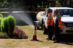 Att bevattna för rådpersonal parkerar blomsterrabatter arkivbild