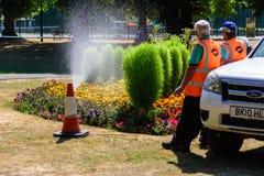 Att bevattna för rådpersonal parkerar blomsterrabatter royaltyfri fotografi