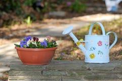 Att bevattna kan och blommakrukan royaltyfri foto