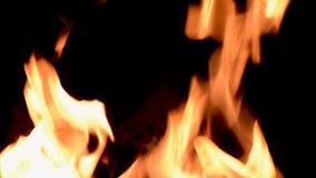 Att bränna flammar på natten Spis med brinnande trä svart brand för bakgrund stock video