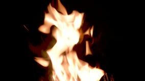 Att bränna flammar på natten Spis med brinnande trä svart brand för bakgrund arkivfilmer