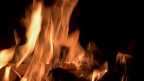 Att bränna flammar på natten Spis med brinnande trä svart brand för bakgrund lager videofilmer