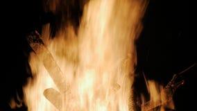 Att bränna loggar in nära övre för orange flammor Röda flammor som svaller upp lager videofilmer
