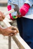 Att bulta för arbetare spikar in i trä arkivbild