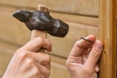Att bulta för händer spikar i träplanka Arkivbild
