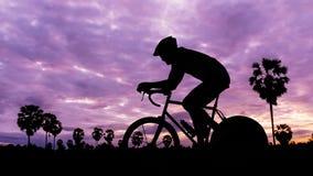 Att cykla på parkerar på skymningtid Arkivbilder