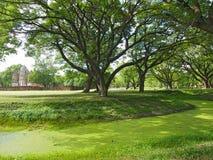 Att cykla runt om historiska Sukhothai parkerar Royaltyfri Bild
