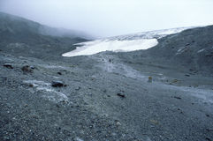 att dra sig tillbaka för alberta Kanada glaciär Arkivfoto