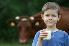 att dricka mjölkar Royaltyfri Foto