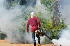 att fördunkla för denguefeber förhindrar spread till Arkivfoton