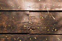 Att förfalla träplankor med spikar Royaltyfri Fotografi