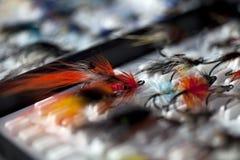 Att fiska flyger i en ask Arkivbild