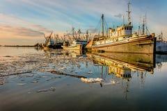 Att fiska sänder på kajen nära kusten med en spegelbild in Fotografering för Bildbyråer