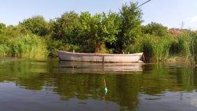 Att fiska svävar på en vit bakgrund Royaltyfri Fotografi