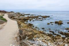 Att fotvandra, att gå och att cykla på den härliga sjösidan skuggar royaltyfria foton