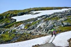 Att fotvandra och cykelrutten längs Flam fodrar i Norge Royaltyfri Foto