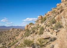 Att fotvandra och slingaspring på höjdpunktmaximum skuggar i Scottsdale, A arkivfoto