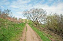 Att fotvandra skuggar på de Malvern kullarna i den engelska bygden Arkivfoto