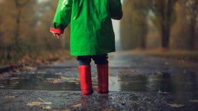 Att gå i den regniga hösten parkerar Fotografering för Bildbyråer