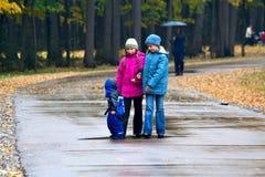 Att gå till och med hösten parkerar (4) royaltyfri bild