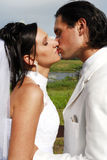 att gifta sig par arkivfoton