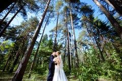 Att gifta sig par på naturen är att krama sig Royaltyfri Bild