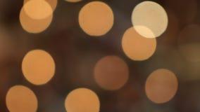 Att hänga på julgrangirlanderna mousserar ljust Bokeh lager videofilmer