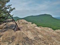 Att hänga vaggar delstatsparken förbiser Royaltyfria Bilder