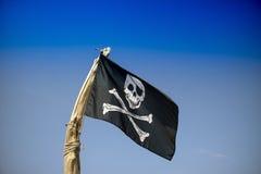 Att att hissa flaggan av piratkopierar Royaltyfria Bilder