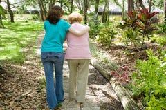 att hjälpa för farmor går Arkivbild