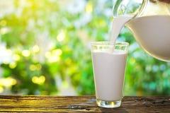 Att hälla mjölkar i exponeringsglaset. Royaltyfria Foton